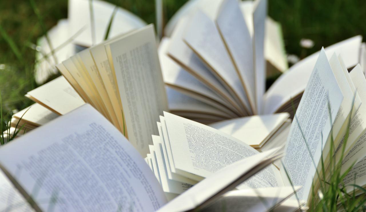 Wakacyjna Wolna Książka